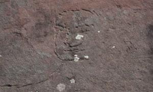 Các nhà khoa học tìm thấy hình Đức Phật khắc trên đá ở Siberia