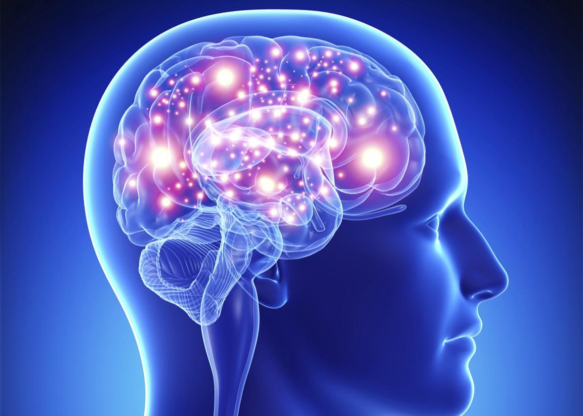 Những sự thật kỳ lạ về não bộ