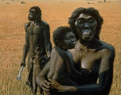 Nguồn gốc loài người ?