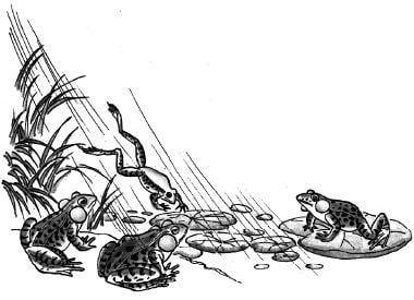 Khi nào thì ếch thích kêu nhất?