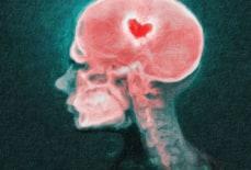 9 Dấu hiệu của người có trí thông minh cảm xúc thấp