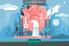 Bốn vũ khí hữu hiệu cho cuộc chiến chống lại biến đổi khí hậu