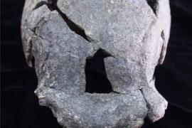 Người cổ đại Homo Erectus và Dự án Nghiên cứu Cổ nhân loại học Gona