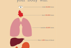 Những điều mà các cơ quan trong cơ thể bạn làm được cứ sau mỗi 24 giờ
