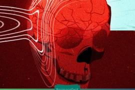 Sau khi đầu đã lìa khỏi cổ, não chúng ta có thể vẫn còn nhận thức trong khoảng từ 15 giây tiếp theo