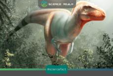 Loài khủng long ăn thịt mới được phát hiện có quan hệ gần gũi với loài khủng long bạo chúa T-rex