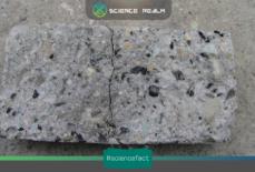 Bê tông cao su (Rubber concrete) – Vật liều được chế tạo bằng cách tái chế lốp xe phế liệu