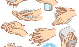 Các thành phần hóa học trong nước rửa tay giúp chúng ta loại bỏ được các vi khuẩn