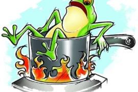 """Hội chứng ếch luộc – Bạn đang bị """"luộc chín"""" mà không hề hay biết"""