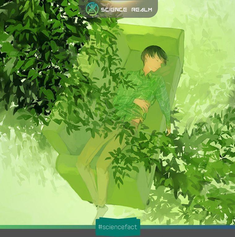 Những thói quen khiến bạn khó chìm sâu vào giấc ngủ hơn