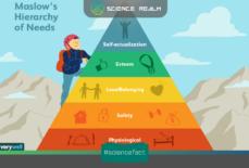 Tháp nhu cầu Maslow x – Công cụ quan trọng của người kinh doanh