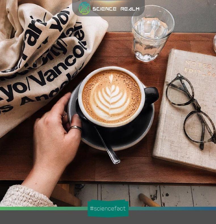 Văn hóa cà phê: Bàn đạp cho những cuộc cách mạng thay đổi lịch sử