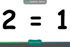 Chứng minh 2 = 1