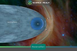 """Nhật quyển (Heliosphere), lớp """"tường lửa"""" bao quanh hệ Mặt Trời"""